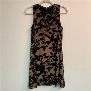 Flowly Floral Shift Black Brown Dress